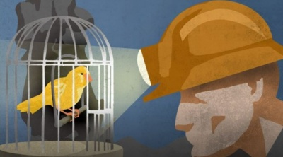 The Canary in your Coalmine